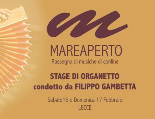 Stage di organetto con Filippo Gambetta